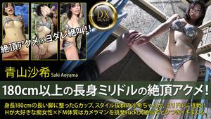 Heyzo   0158   Saki Aoyama